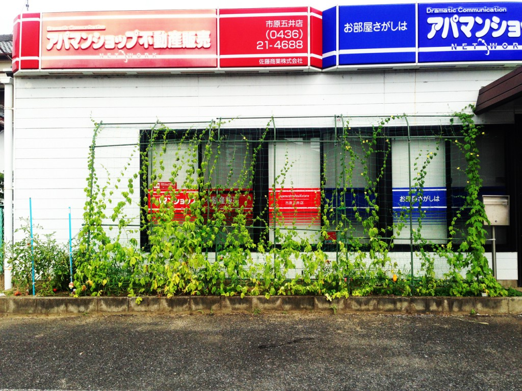 green20150730_stc3